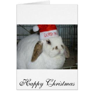 bunny lovers card