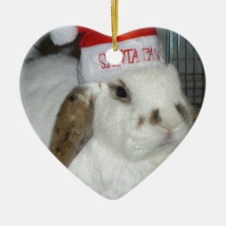 bunny lovers christmas ornament