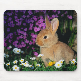 bunny mouse pad 3