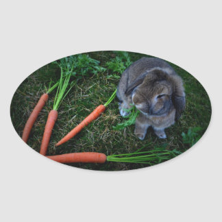 Bunny Munches Carrots / Sticker