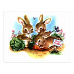 Bunny Patch Postcard