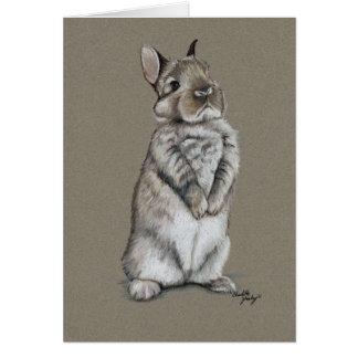 Bunny Rabbit Art Note Card