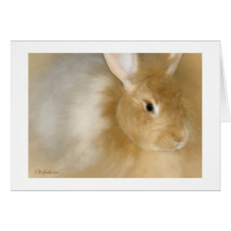 Bunny Rabbit (Caramel) Greeting Card