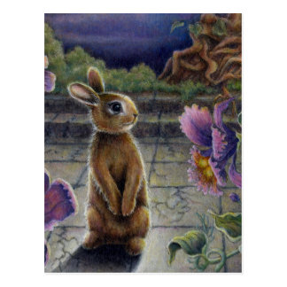 Bunny Rabbit & Flowers Night Dreaming Post Cards