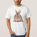 Bunny Rabbit T-shirts