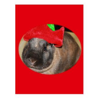 Bunny Rabbit with Santa Hat says Merry Christmas Postcard