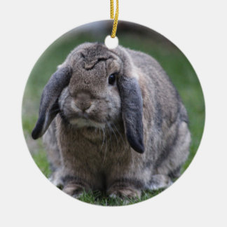 bunny round ceramic decoration