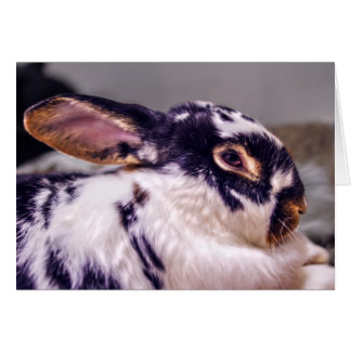 BunnyLuv Greeting Card Featuring Fiver