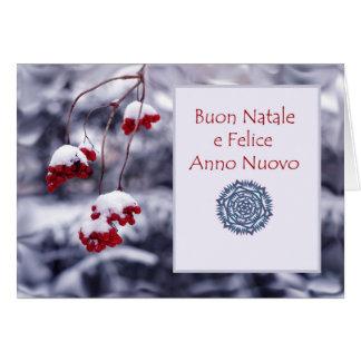 Buon Natale e Felice Anno Nuovo, Italian Christmas Card