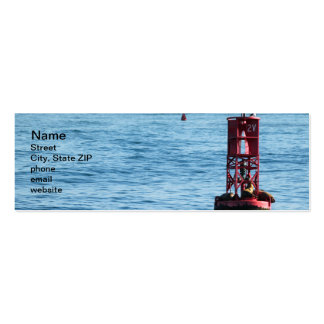 Buoy Sea Lions Pack Of Skinny Business Cards
