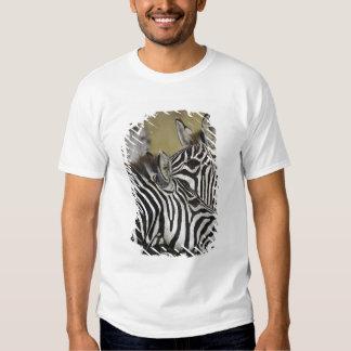 Burchelli's Zebra, Equus burchellii, Masai Mara, 3 Tee Shirt