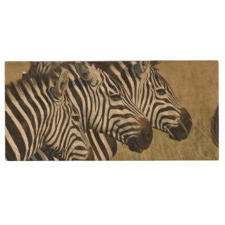 Burchelli's Zebra, Equus burchellii, Masai Mara, 4 Wood USB 2.0 Flash Drive