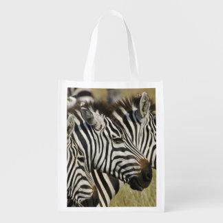 Burchelli's Zebra, Equus burchellii, Masai Mara, 4 Reusable Grocery Bag