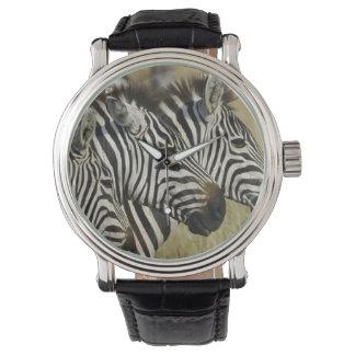 Burchelli's Zebra, Equus burchellii, Masai Mara, 4 Wrist Watches