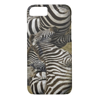 Burchelli's Zebra, Equus burchellii, Masai Mara, iPhone 7 Case