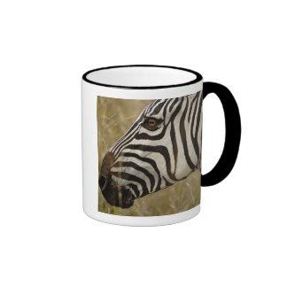 Burchelli's Zebra, Equus burchellii, Masai Coffee Mugs