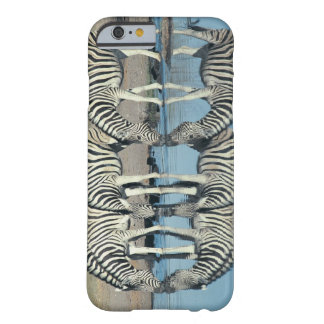 Burchells Zebra (Equus burchelli) drinking at Barely There iPhone 6 Case
