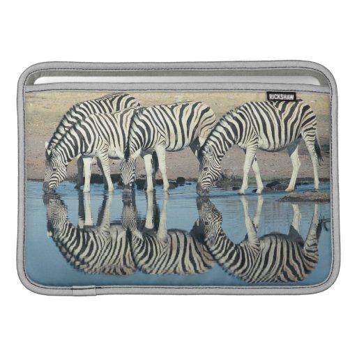 Burchells Zebra (Equus burchelli) MacBook Sleeve