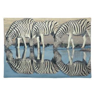 Burchells Zebra (Equus burchelli) Place Mats