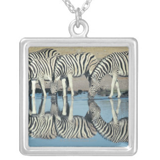 Burchells Zebra (Equus burchelli) Silver Plated Necklace