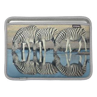 Burchells Zebra (Equus burchelli) Sleeve For MacBook Air