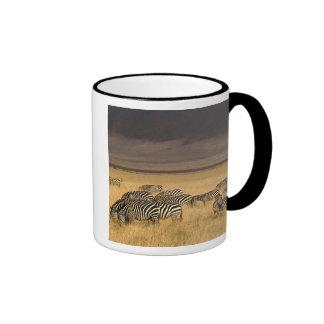 Burchell's Zebra, Equus burchellii, Ngorongoro Coffee Mug