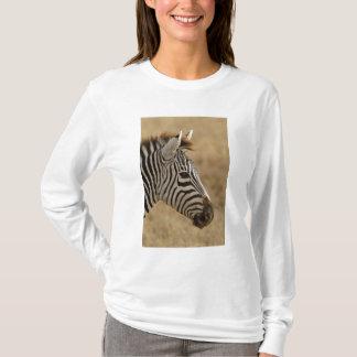 Burchell's Zebra, Equus burchellii, Ngorongoro T-Shirt