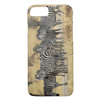 Burchell's Zebra, Equus burchellii, Tarangire iPhone 8/7 Case