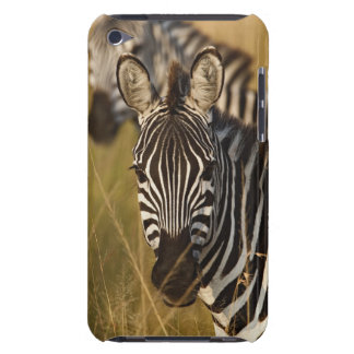 Burchell's Zebra in tall summer grass, Masai Barely There iPod Covers