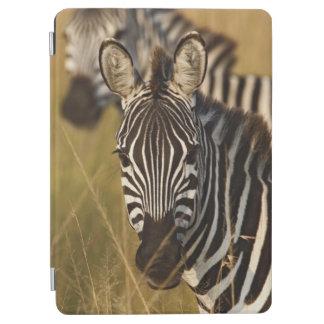 Burchell's Zebra in tall summer grass, Masai iPad Air Cover