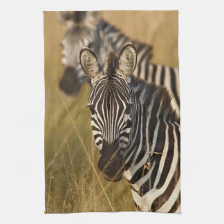 Burchell's Zebra in tall summer grass, Masai Tea Towel