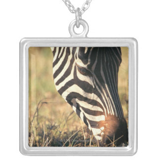 Burchell's zebra silver plated necklace