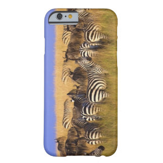 Burchell's Zebras and Wildebeest in tall summer Barely There iPhone 6 Case