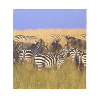 Burchell's Zebras and Wildebeest in tall summer Notepad