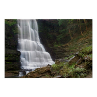 Burgess Falls  Print