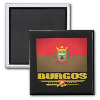Burgos Magnet