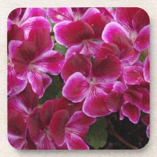 Burgundy Geranium Coasters