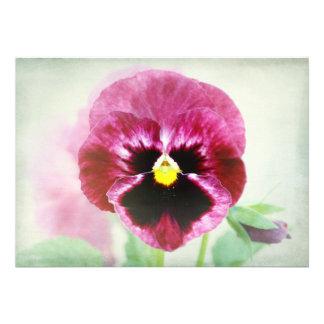 Burgundy Red Pansy Flower Invitation