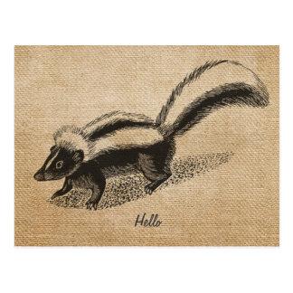 Burlap Vintage Skunk Postcard