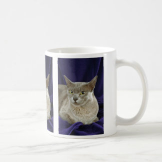 Burmese, blue coffee mug