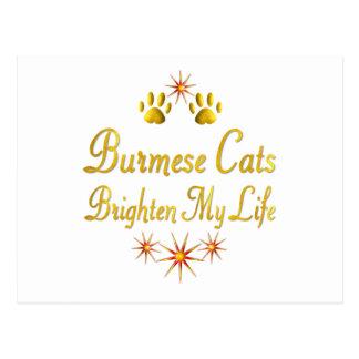 Burmese Cats Brighten My Life Postcard