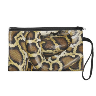 Burmese python wristlet purse