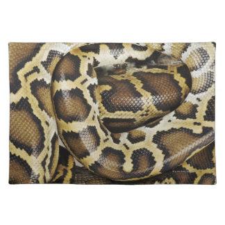 Burmese python placemat