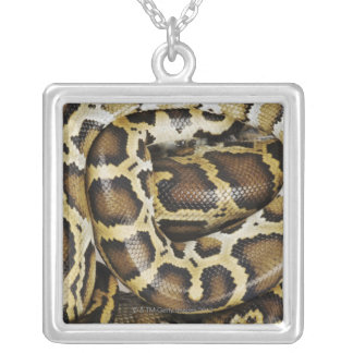 Burmese python silver plated necklace