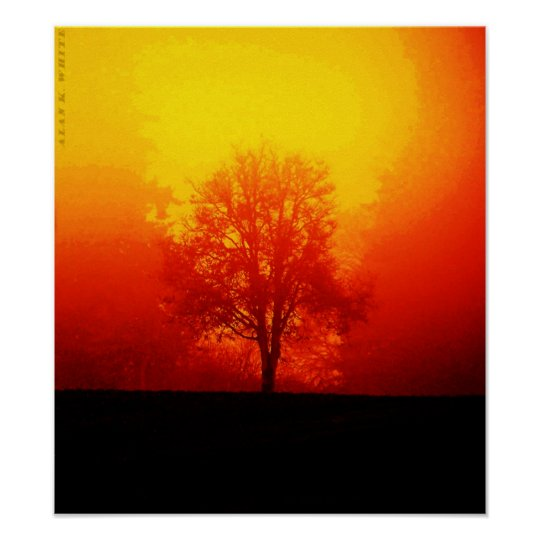 Burning Tree Poster