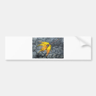 Burnt black wood with yellow leaf bumper sticker