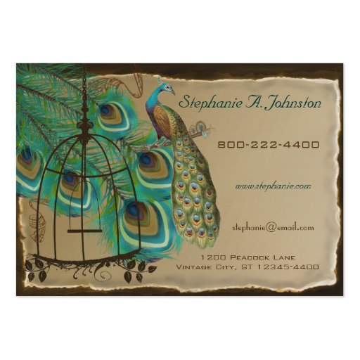 Burnt Edges Vintage Peacock Feathers Birdcage Business Cards