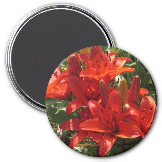 Burnt Orange Asiatic Lilies Magnet