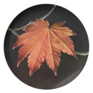Burnt Orange Leaf Plate