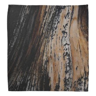 Burnt Tree Bark Texture Bandana